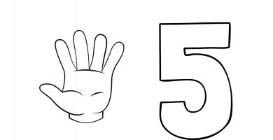 fichas numero 5